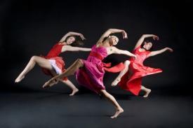 Dans opleidingspecial